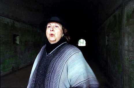 The Tunnel Singer (Lee Ellen Shoemaker)