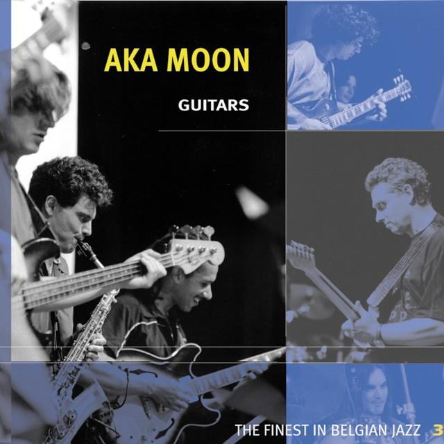 Aka Moon — Guitars