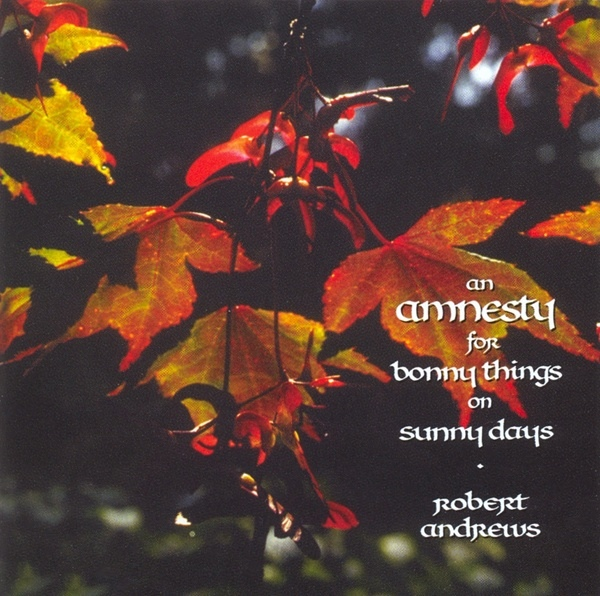 An Amnesty for Bonny Things on Sunny Days Cover art