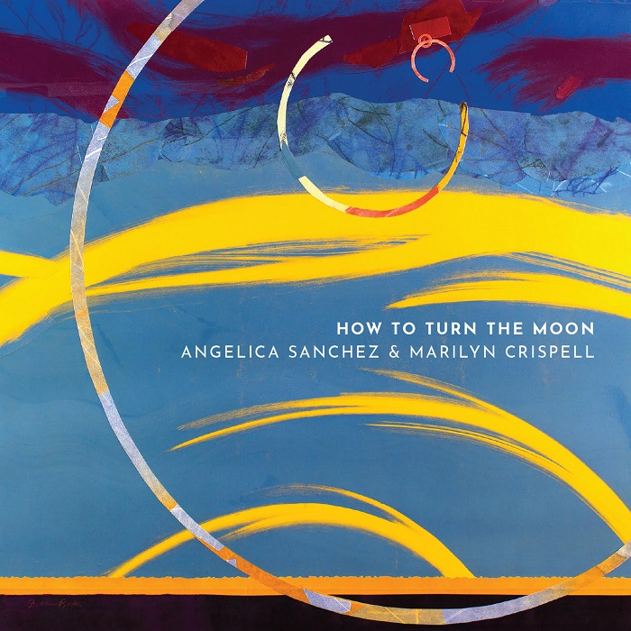 How to Turn the Moon Cover art
