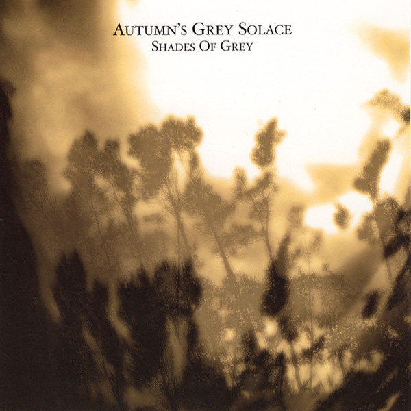 Autumn's Grey Solace — Shades of Grey