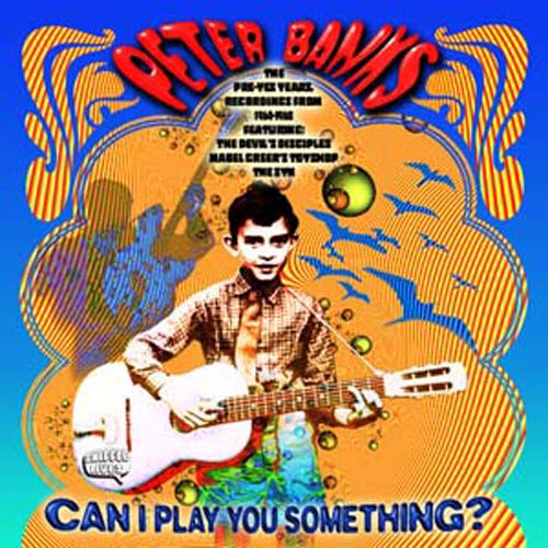 Peter Banks — Can I Play You Something?