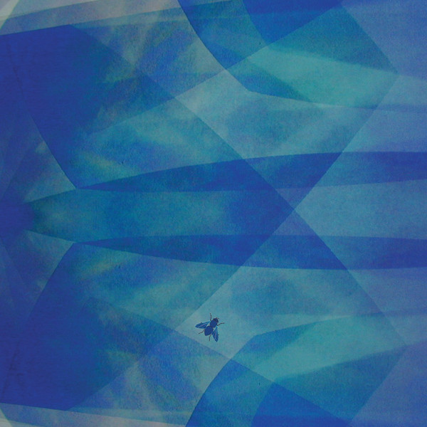 Cyro Baptista — Bluefly