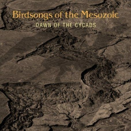 Dawn of the Cycads Cover art