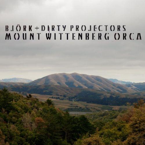 Björk + Dirty Projectors — Mount Wittenberg Orca