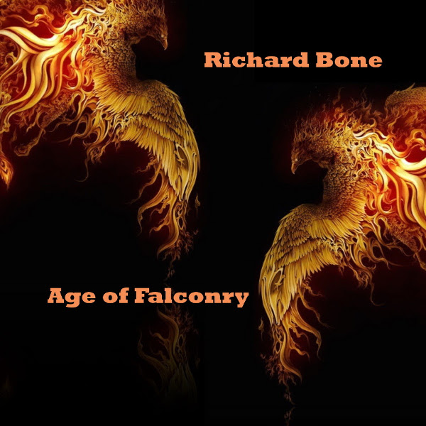 Age of Falconry Cover art