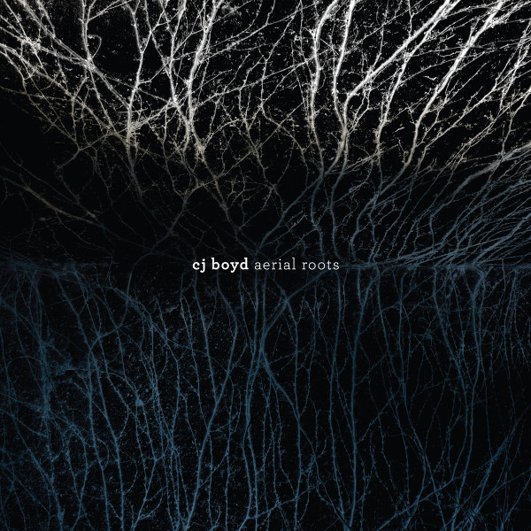 Aerial Roots Cover art