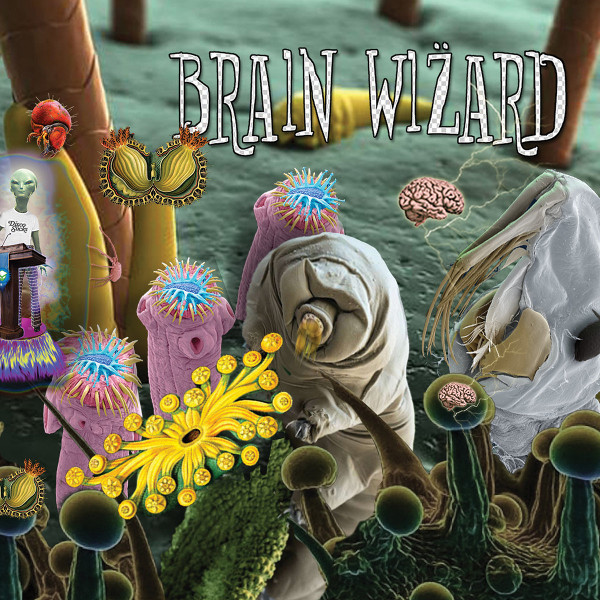 Brain Wizard — Most Hella Dopest