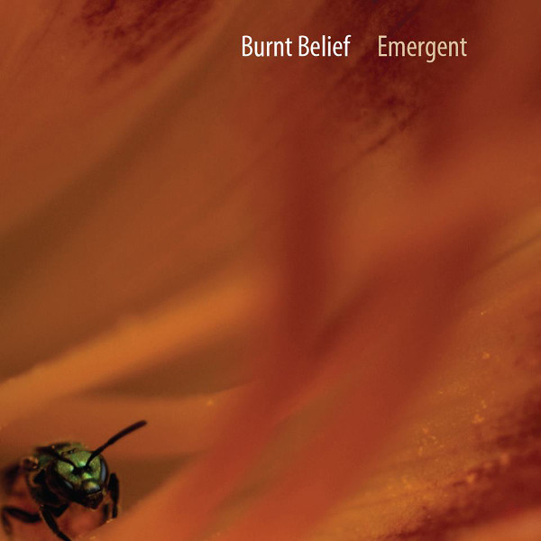 Burnt Belief — Emergent