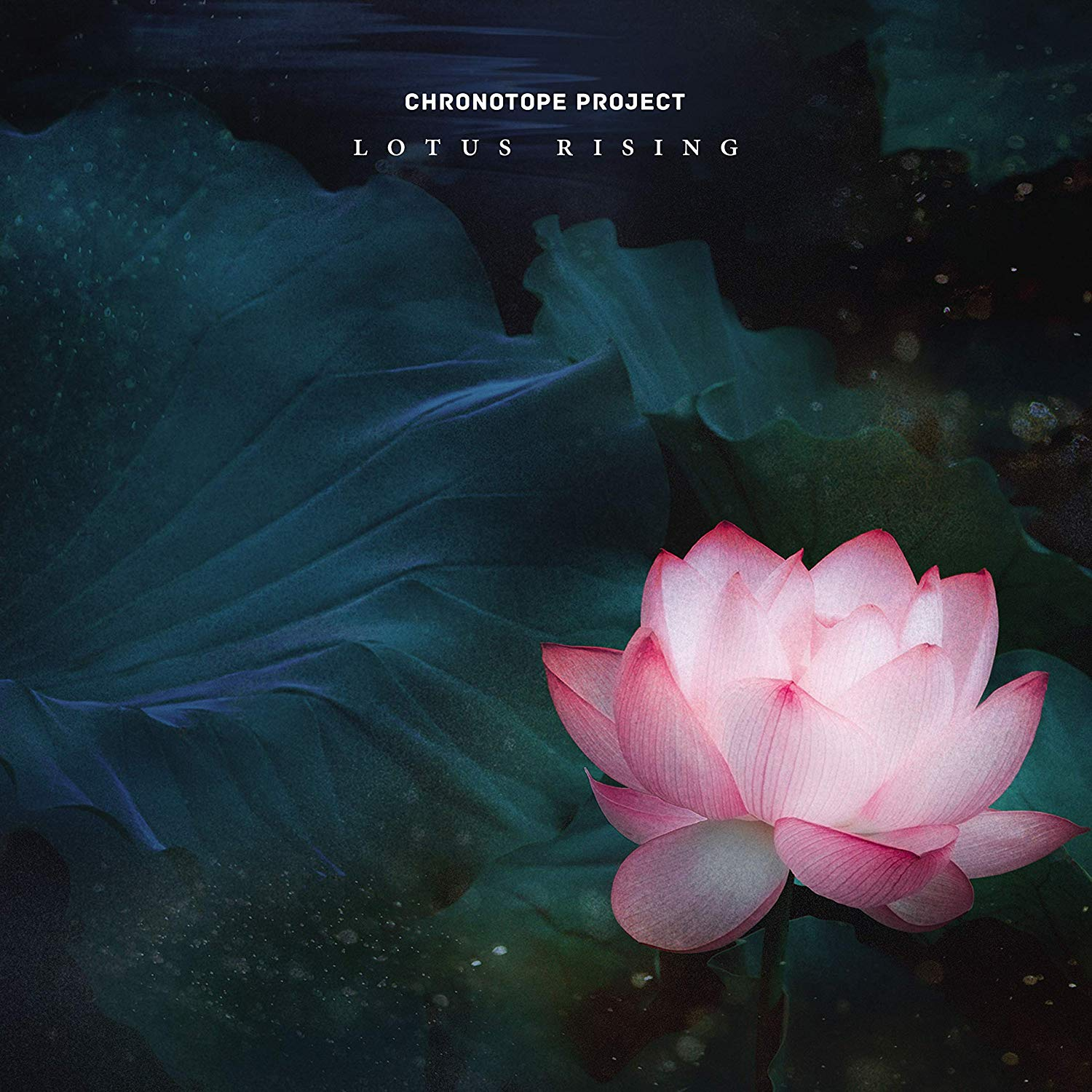 Lotus Rising Cover art