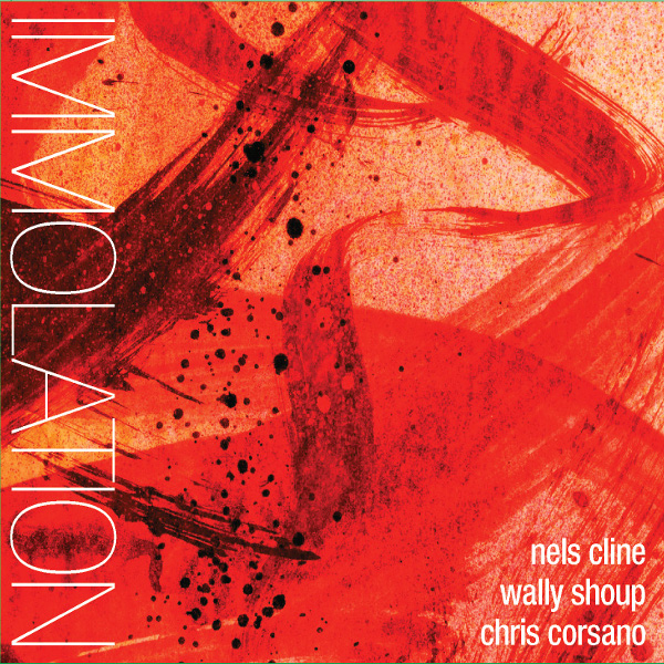 Nels Cline / Wally Shoup / Chris Corsano — Immolation / Immersion