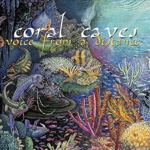 Coral Caves — Voice from a Distance