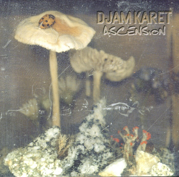 Djam Karet — Ascension: New Dark Age Vol. 2