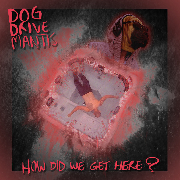 How Did We Get Here? Cover art