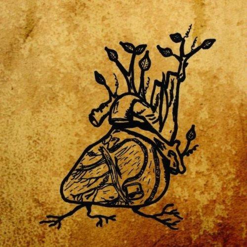 Ephemeral Sun — Harvest Aorta