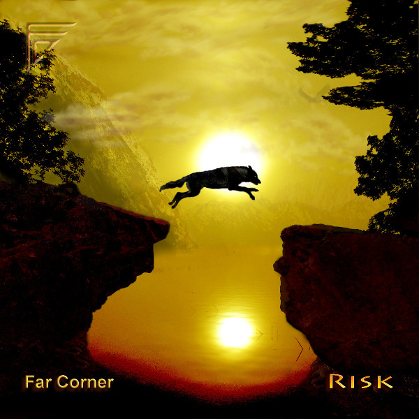 Risk Cover art