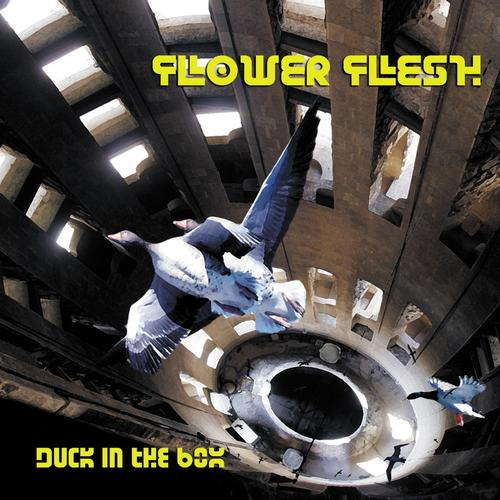 Flower Flesh — Duck in the Box