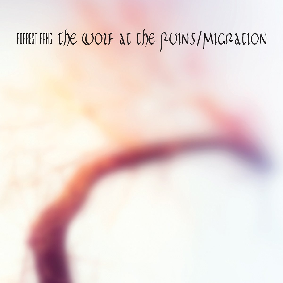 The Wolf at the Ruins / Migration Cover art