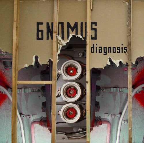 Gnomus — Diagnosis