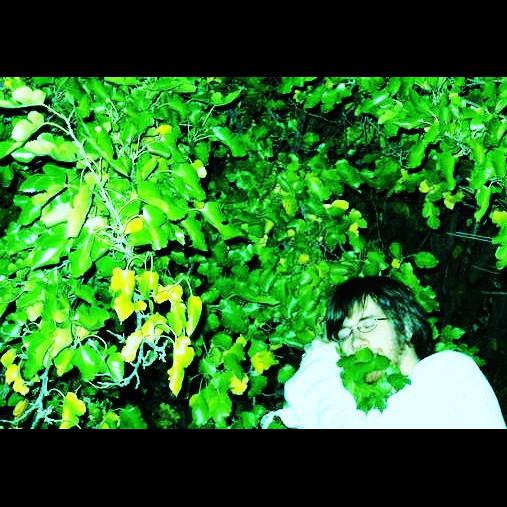 Golden Death Music — Provincial Escape