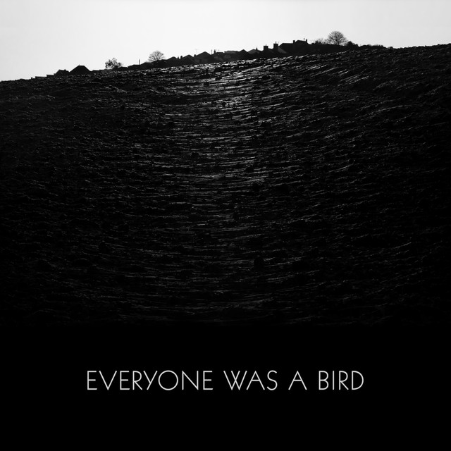 Everyone Was a Bird Cover art
