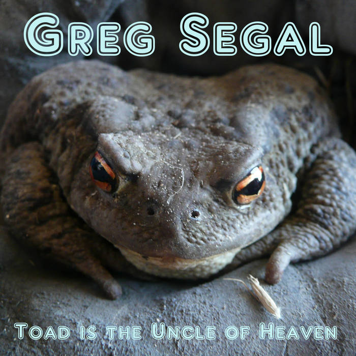 Toad Is the Uncle of Heaven Cover art
