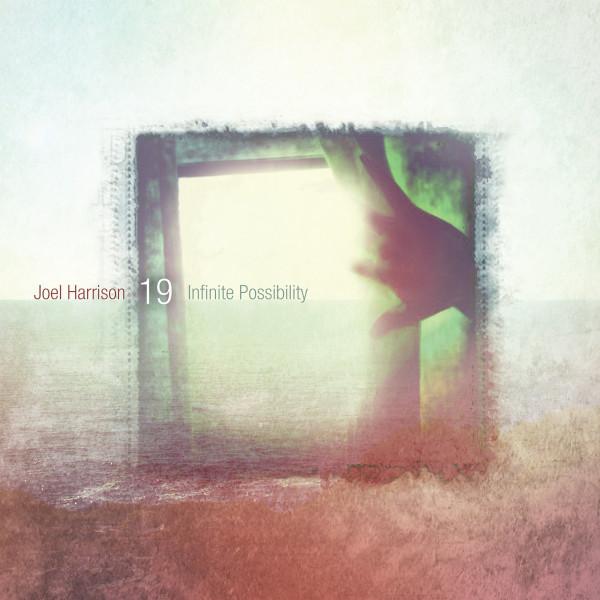Joel Harrison 19 — Infinite Possibility