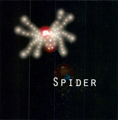 Spider Cover art