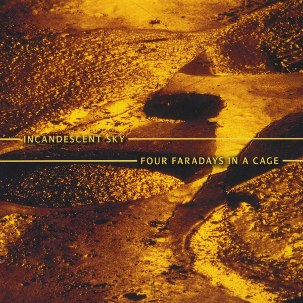 Four Faradays in a Cage Cover art