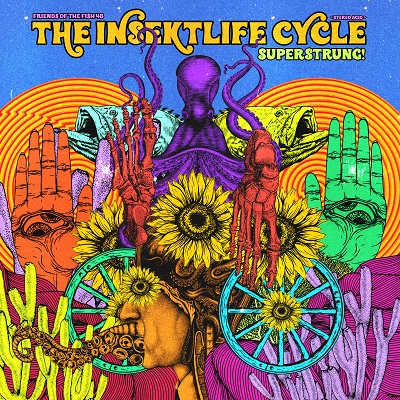 The Insekt Life Cycle — Superstrung