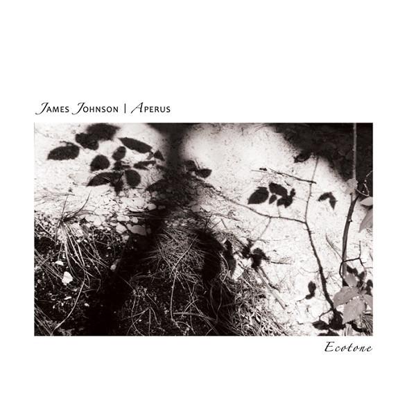 James Johnson / Aperus — Ecotone