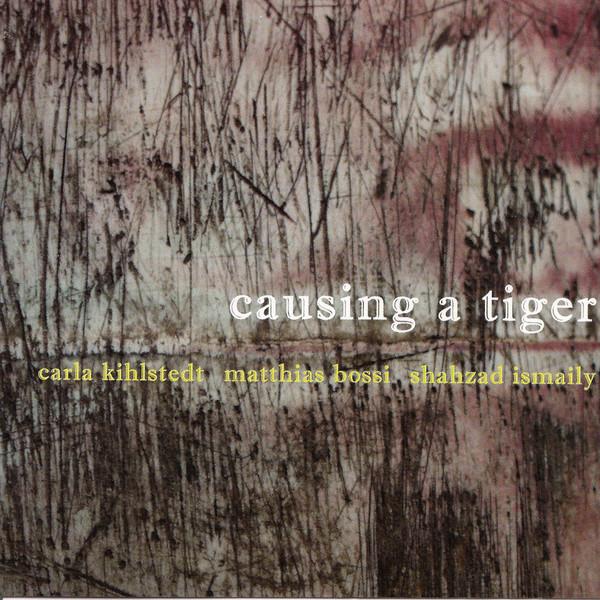 Causing a Tiger Cover art