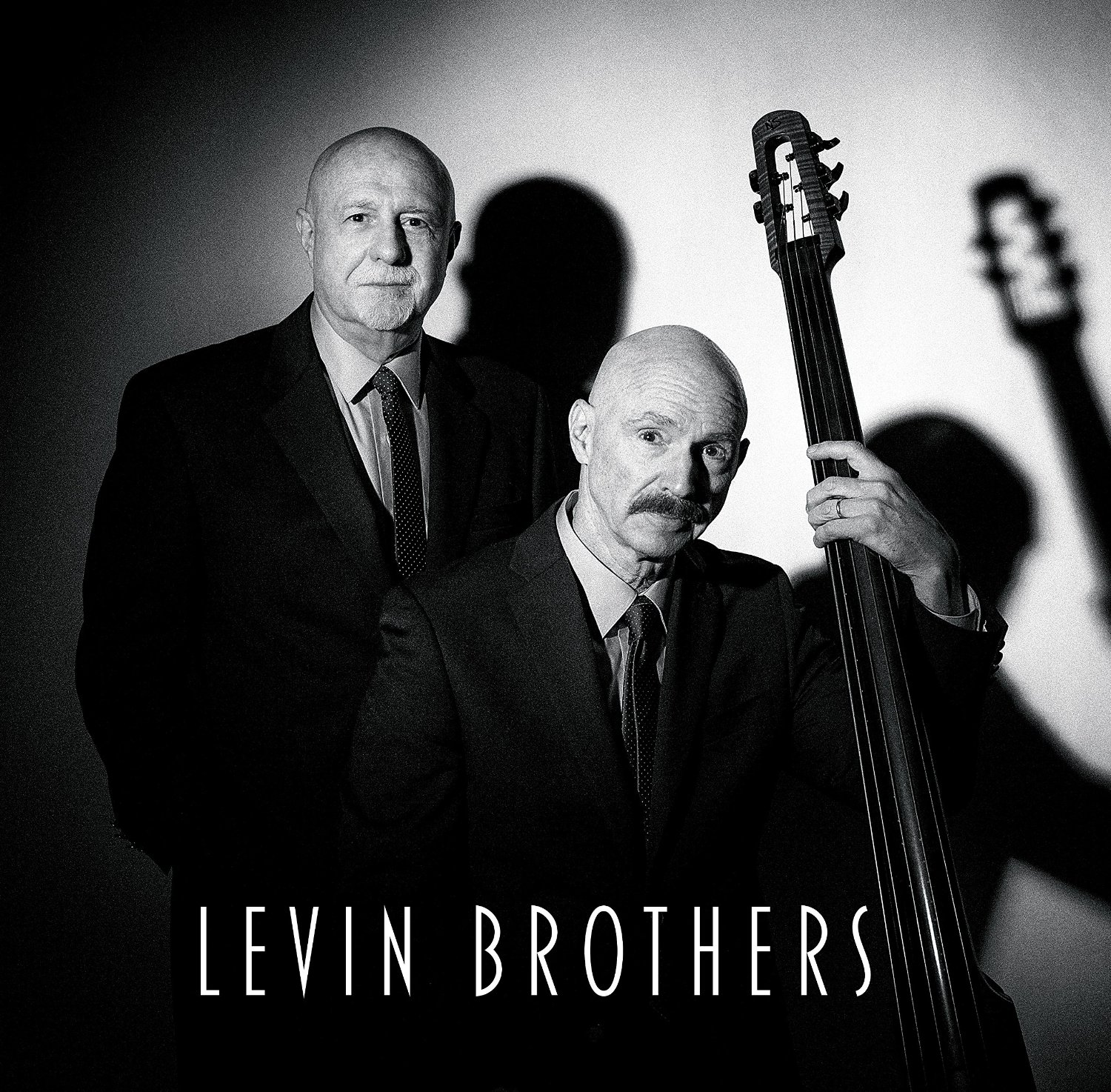 Levin Brothers Cover art