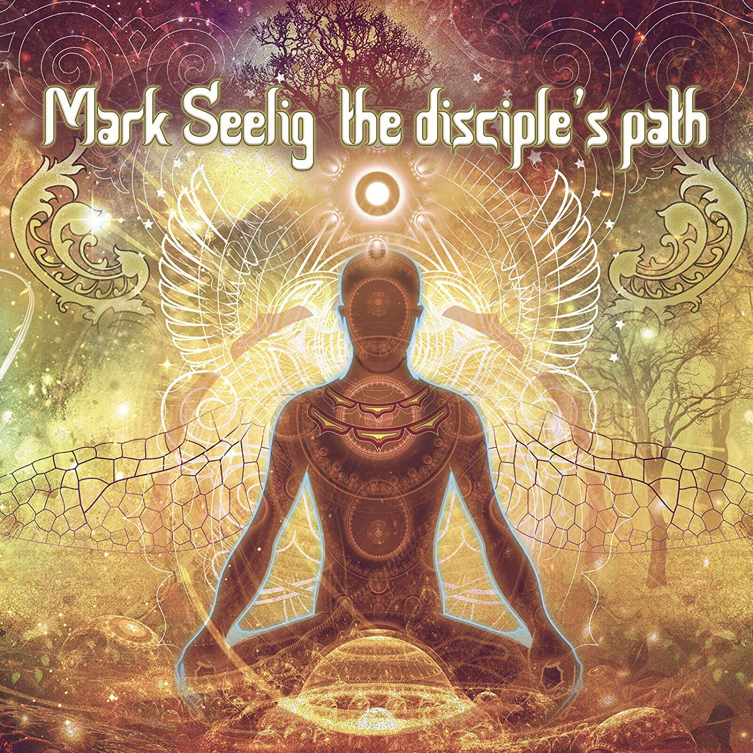 The Disciple's Path Cover art
