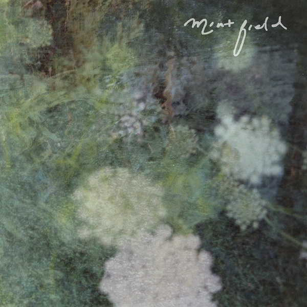 Mint Field — Sentimiento Mundial