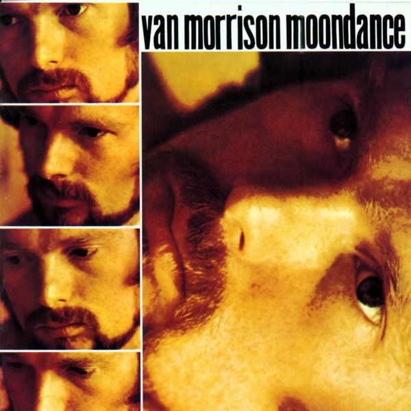 Van Morrison — Moondance