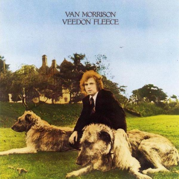 Veedon Fleece Cover art