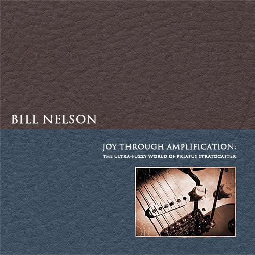 Bill Nelson — Joy through Amplification