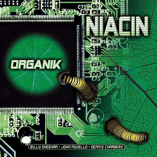 Niacin — Organik