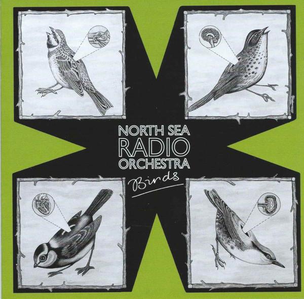 North Sea Radio Orchestra — Birds