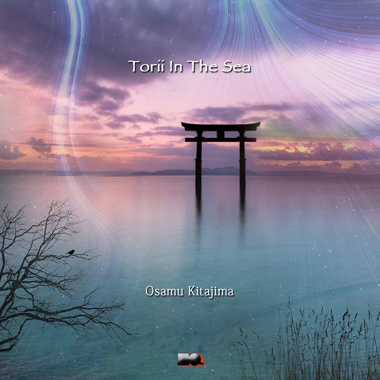 Torii in the Sea Cover art