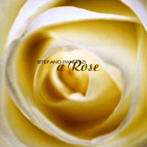 Stefano Panunzi — A Rose