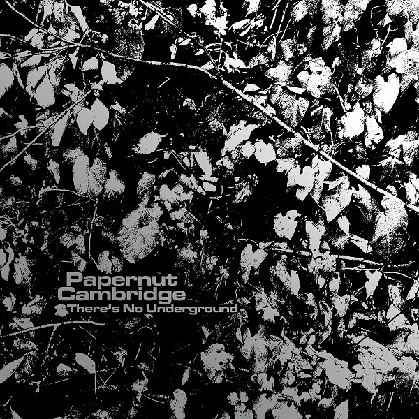 Papernut Cambridge — There's No Underground