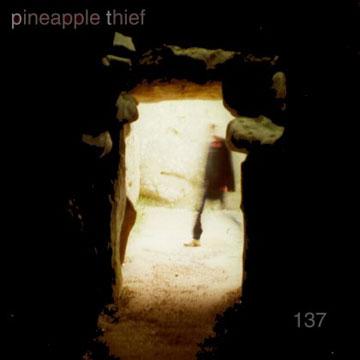 Pineapple Thief — 137