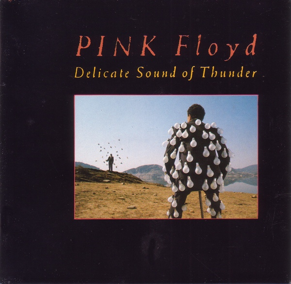 Pink Floyd — Delicate Sound of Thunder