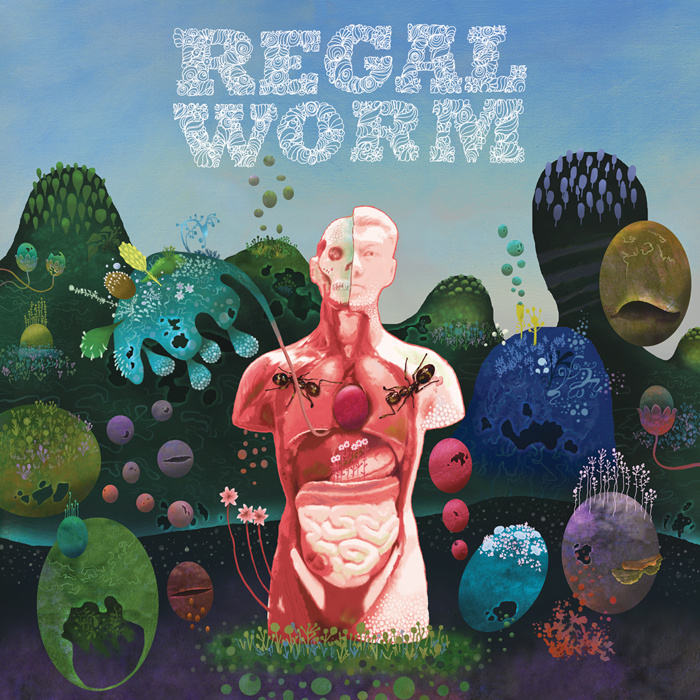 Regal Worm — Use and Ornament