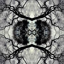 Adam Rudolph / Go: Organic Orchestra — Sonic Mandala