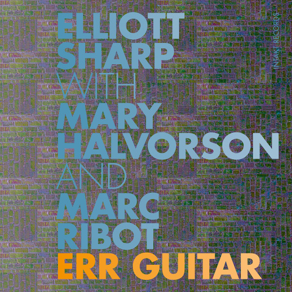 Elliott Sharp — Err Guitar