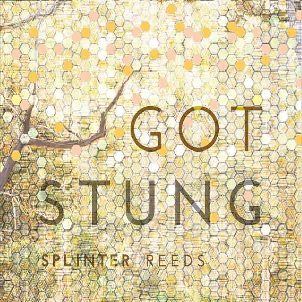 Splinter Reeds — Got Stung
