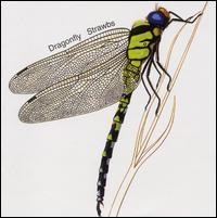 Strawbs — Dragonfly